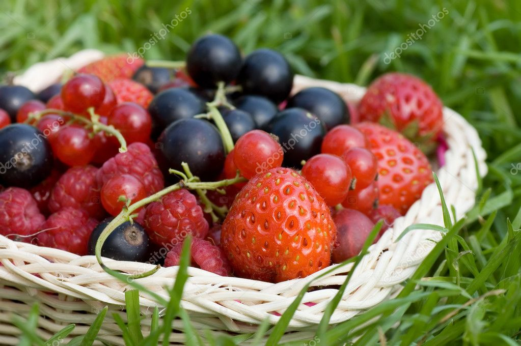 Ripe berries in a basket  — Stock Photo #4808385