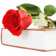 Beautiful red rose on the book isolated — Stock Photo #4976069
