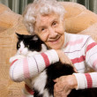 The grandmother with a cat on a sofa — Stock Photo