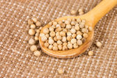 White Peppercorns on a wooden spoon — Stock Photo