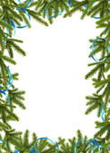 Card for the holiday with branches on the white background — Stock Photo