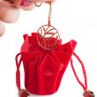 Little red bag — Stok fotoğraf