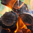 Bonfire — Stock Photo #4515495