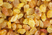 Golden yellow raisins background — Photo