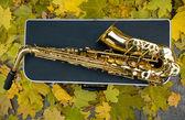 Saxofon med fall — Stockfoto