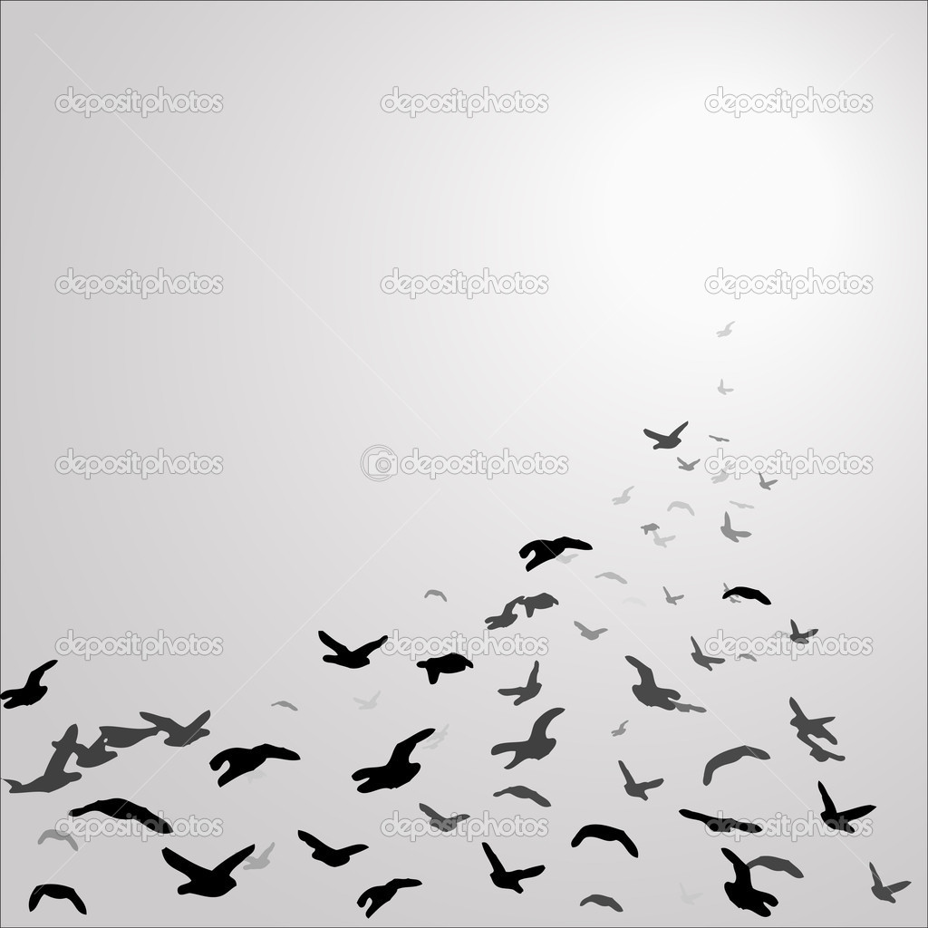 Birds flying up drawing