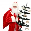 Stock Photo: SantClaus and Money Tree