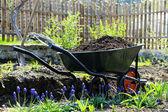 Trädgårdsskötsel — Stockfoto