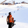 Stock Photo: Snowboarder on hill