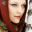 Gorgeous russiwomin shawl standing by birch — Stock Photo #5177029