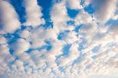 White fluffy cumulus clouds on a blue sky....... — Stock Photo