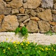 Clearing with wild flowers near the wall of rough stone - Stock Photo