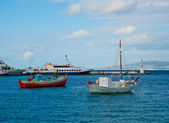 Barcos de pesca en la bahía de marina en la isla de mykonos — Foto de Stock