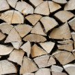 Logs — Stock Photo #3978843