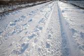 Snowy track — Stock Photo