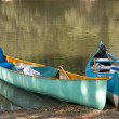 Stock Photo: Canoes