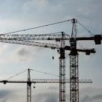 Cranes — Stock Photo #5334977