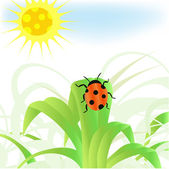 Ladybug. Conceptual illustration — Stock Photo