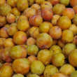 Plums — Stock Photo #3969583
