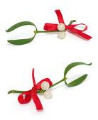 White mistletoe set — Stock Photo