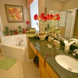 Stock Photo: Master Bathroom