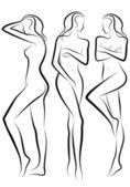 Kadın vücudu, vektör — Stok Vektör
