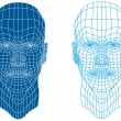 Mesh head, vector - Vettoriali Stock