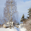 Stock Photo: Russicountry by winter