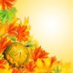 Halloween Kürbis mit Herbst Laub isoliert — Stockfoto