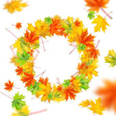 Wreath from autumn leaves isolated on white — Stock Photo