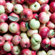 Backgound from apples — Stock Photo #3974394