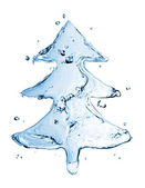 Su sıçrama üzerinde beyaz izole köknar ağacı — Stok fotoğraf