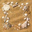 Frame from various shells on sand - Stock fotografie