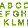 Green ecofriendly A-N letters with grass pattern — Stock Photo