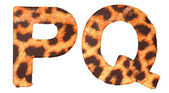 Leopard fur P and Q letters isolated — Stock Photo