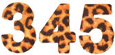 Leopard skin 3 4 and 5 figures isolated — Stock Photo