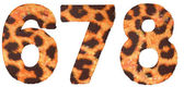 Leopard skin 6 7 and 8 figures isolated — Stock Photo