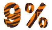 Tigre cayó 9 y porcentaje marca aislada — Foto de Stock