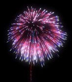 Colorful festive fireworks at night — Stock Photo
