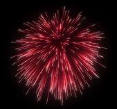 Celebration: red festive fireworks — Zdjęcie stockowe