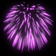 Lilac festive fireworks at night — Stock Photo