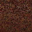 Unsorted Coffee beans texture or background — Stock Photo