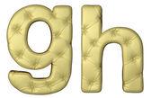 Lüks bej deri yazı tipi g s harfler — Stok fotoğraf