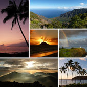 Hawaii collage with multiple typical photos — Foto de Stock