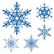 Vector set of snowflakes — 图库矢量图片