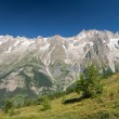 Stock Photo: Mont Blanc massif panorama