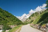 Alpine road — Stock Photo