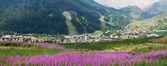 La Thuile, panoramic view — Stock Photo