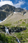 Alps in summer — Stock Photo