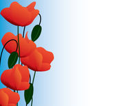 Banner of the dismissed poppies — Stock Vector